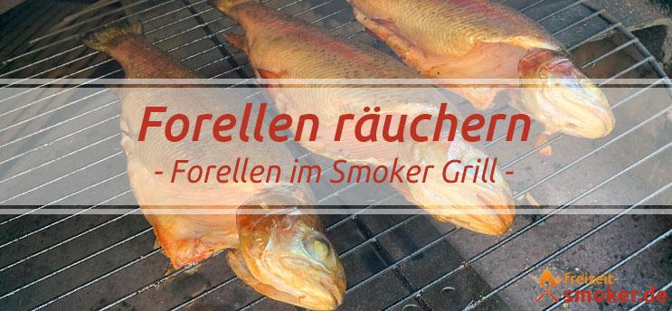 Forellen räuchern | Rezept & Tipps | freizeit-smoker de